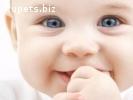 Клініка репродуктивної медицини шукає сурогатних мам