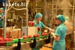 Разнорабочий на консервный завод(Словакия)