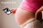 Сотрудничество для доноров и суррогатных мам.