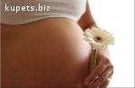 Сотрудничество для суррогатных мам и доноров.
