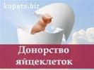 Станьте суррогатной мамой или донором яйцеклетки