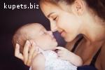 Сурогатне материнство, донор яйцеклітини