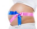 Суррогатное материнство, доноры